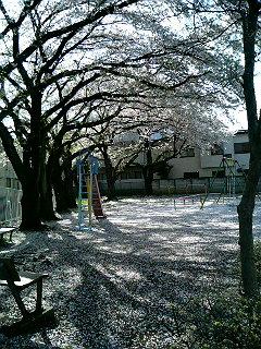 これも桜鏡と言って良いのだろうか。