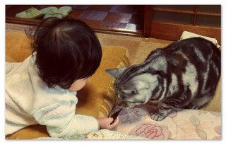 hanjirou_musume.jpg